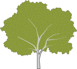 Icon of a tree.