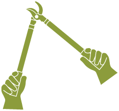 Icon of pruning loppers.