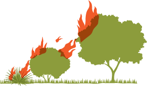 Icon showing fire laddering effect jumping from a shrub to a bush, to a tree.