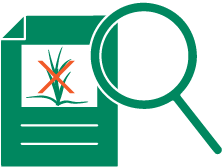 icon of a magnifying glass over an invasive plant identification form