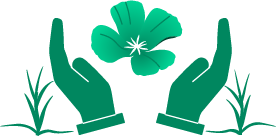 icon of a flower held between two hands