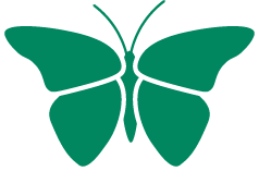 Icon Of A Butterfly